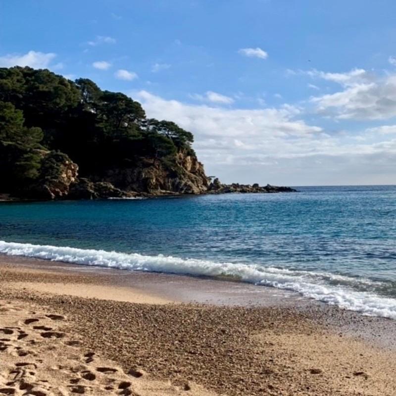Aprobada una primera moratoria de tramitaciones y licencias en la franja litoral de la Costa Brava